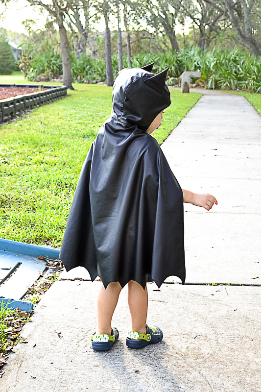 Hooded Bat Cape